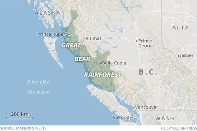 cp-bc-great-bear-rainforest